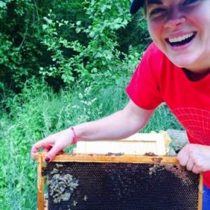 hurrybees